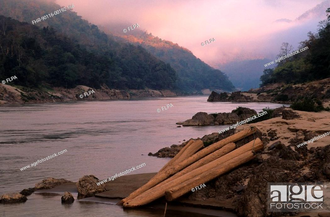 Stock Photo: Forest destruction, Illegally cut teak ready for rafting down Salaween River, Northwest Thailand.