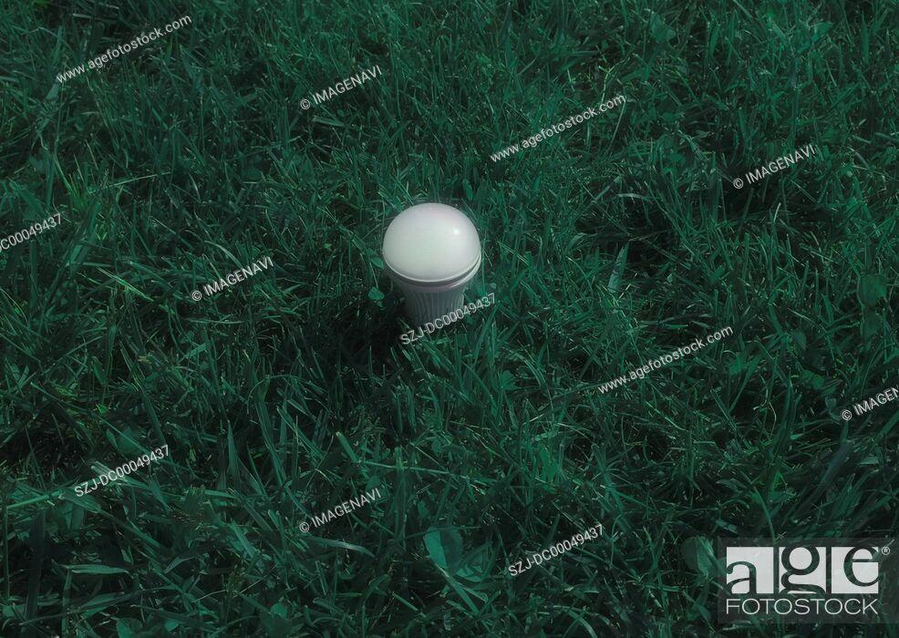 Imagen: LED bulb on grassland.