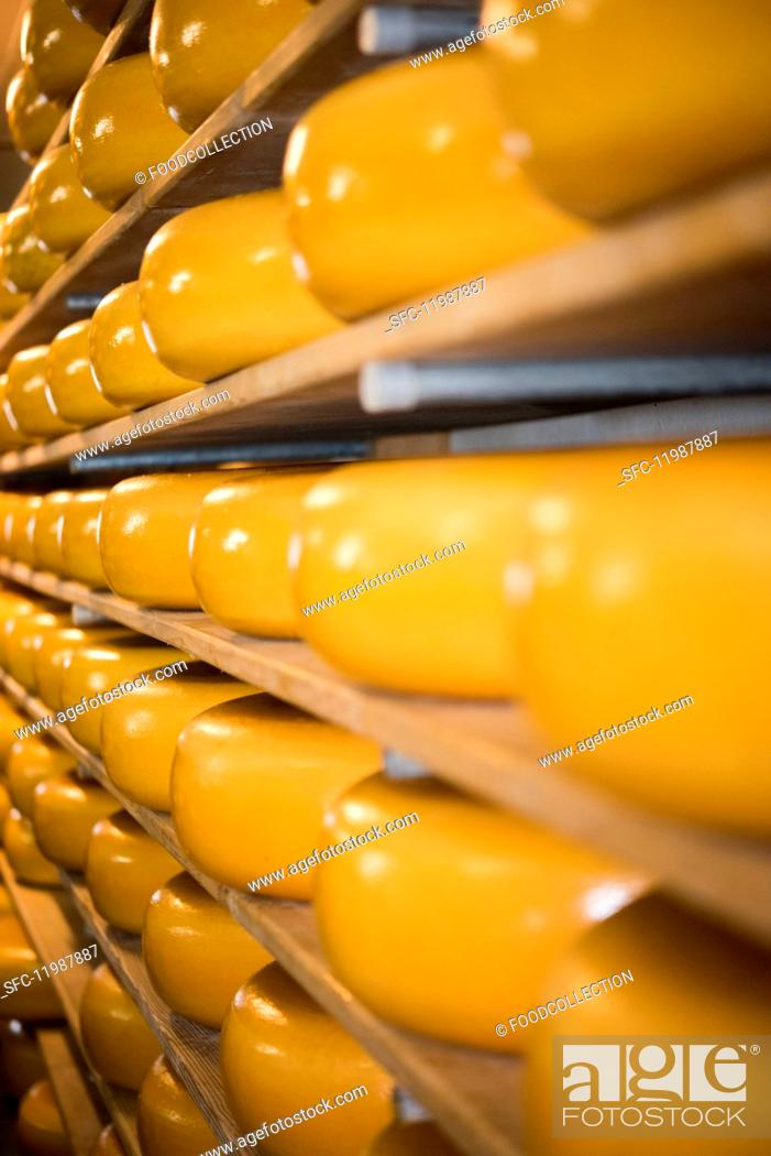 Stock Photo: Cheeses on shelves.