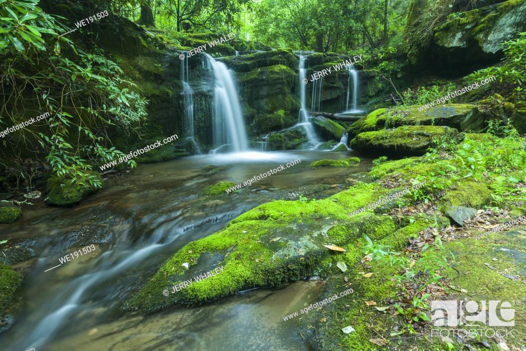 Stock Photo: Stream & Waterfalls in Greenbrier in Great Smoky Mountains National Park, TN.