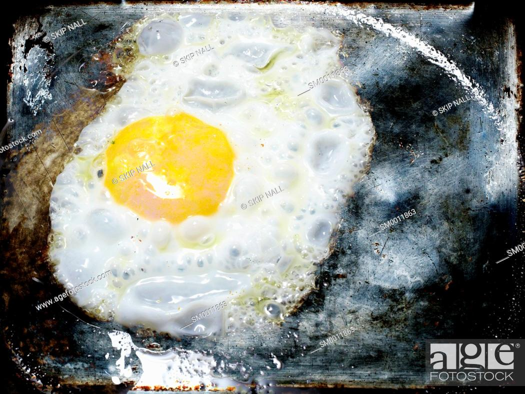 Stock Photo: An egg frying in a pan.