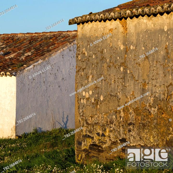 Stock Photo: Facade detail field typical portuguese house, Alentejo, Portugal, Europe.