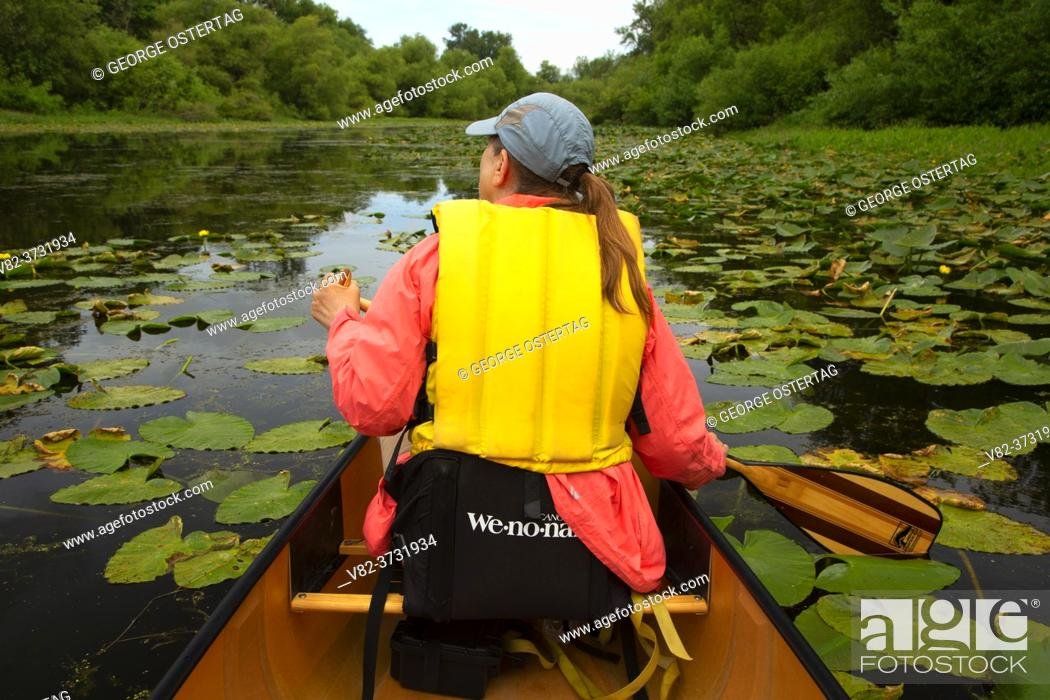 Stock Photo: Canoeing on Goose Lake, Willamette Mission State Park, Oregon.