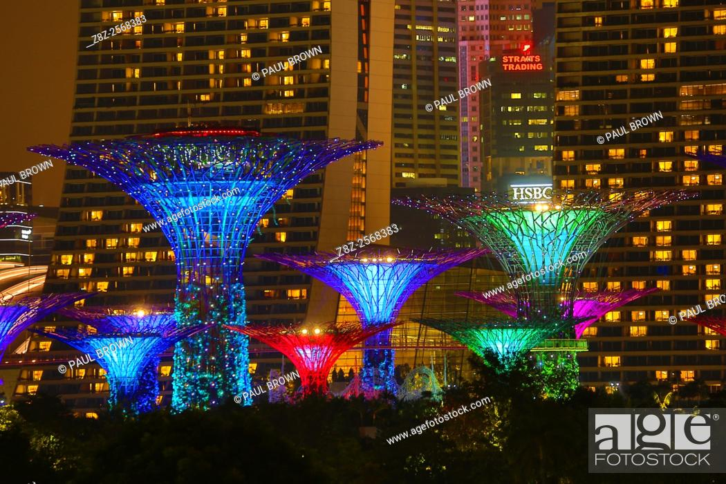 Stock Photo: Night scene of the illuminated Supertrees in the Supertrees Grove in the Gardens by the Bay, Singapore, Republic of Singapore.