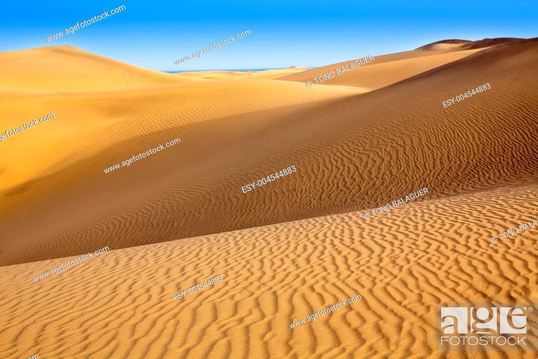 Stock Photo: Desert sand dunes in Maspalomas Oasis Gran Canaria at Canary islands.