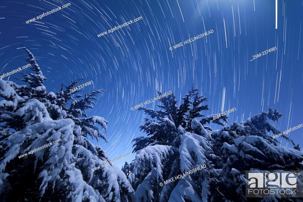 Stock Photo: Moonlight illuminates snow covered trees in Nebraska as stars trail overhead, along with an iridium flare.