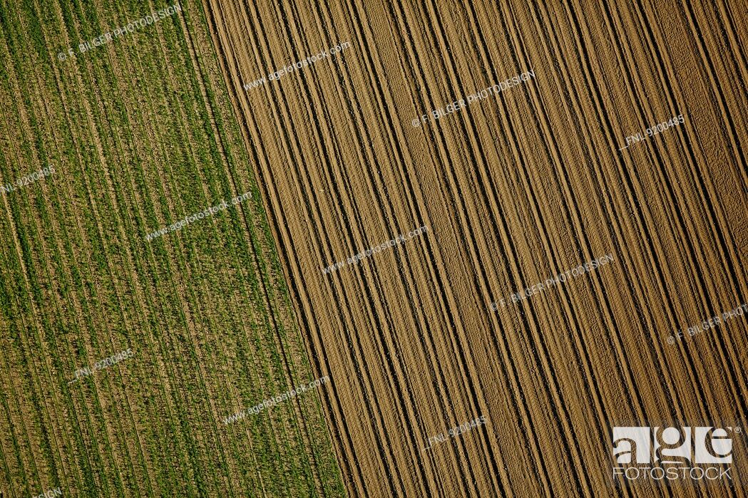 Stock Photo: Green and brown field, Baden-Wuerttemberg, Germany, aerial photo.