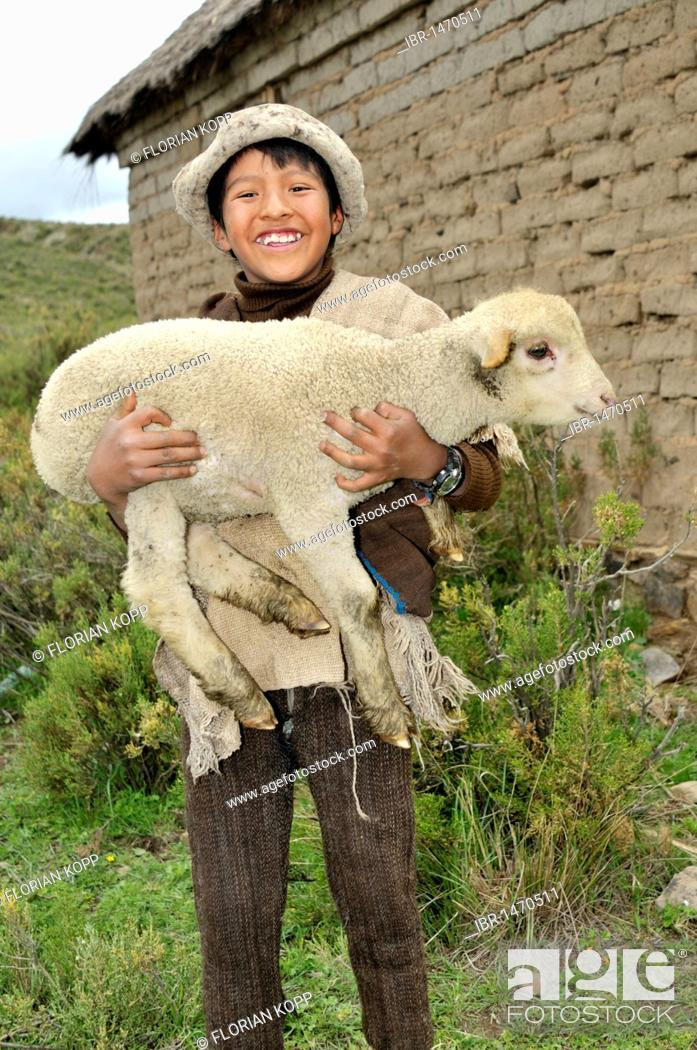 Stock Photo: Shepherd boy carrying a lamb in his arms, Altiplano Bolivian highland, Oruro Department, Bolivia, South America.