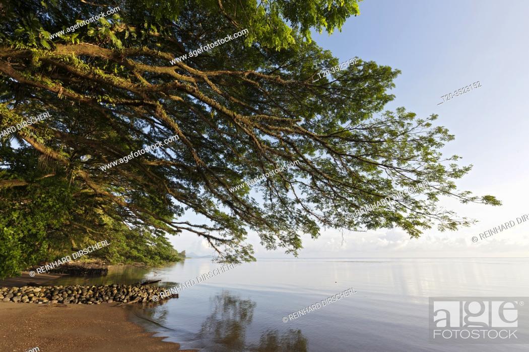 Imagen: Beach of Kimbe Bay, New Britain, Papua New Guinea.
