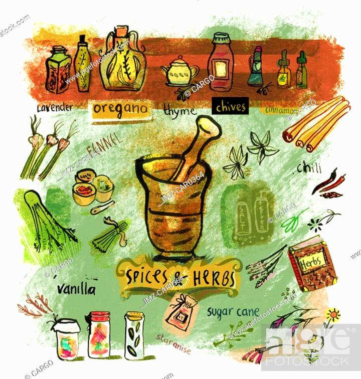 Stock Photo: Collage of various spices and herbs.