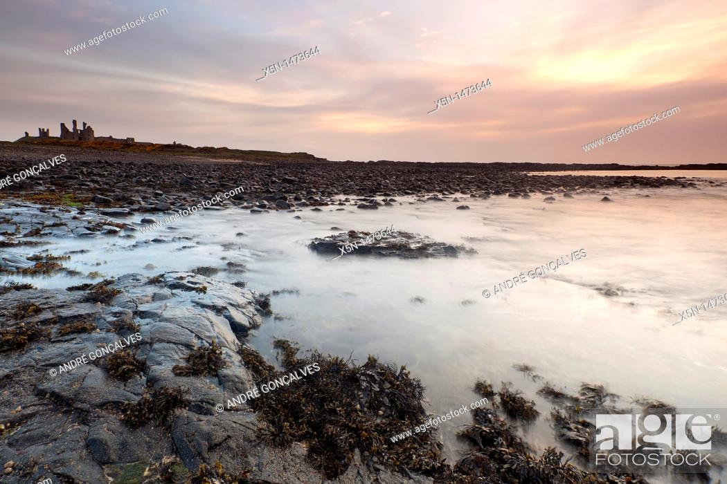 Stock Photo: Dunstanburgh Castle, Northumberland, England.