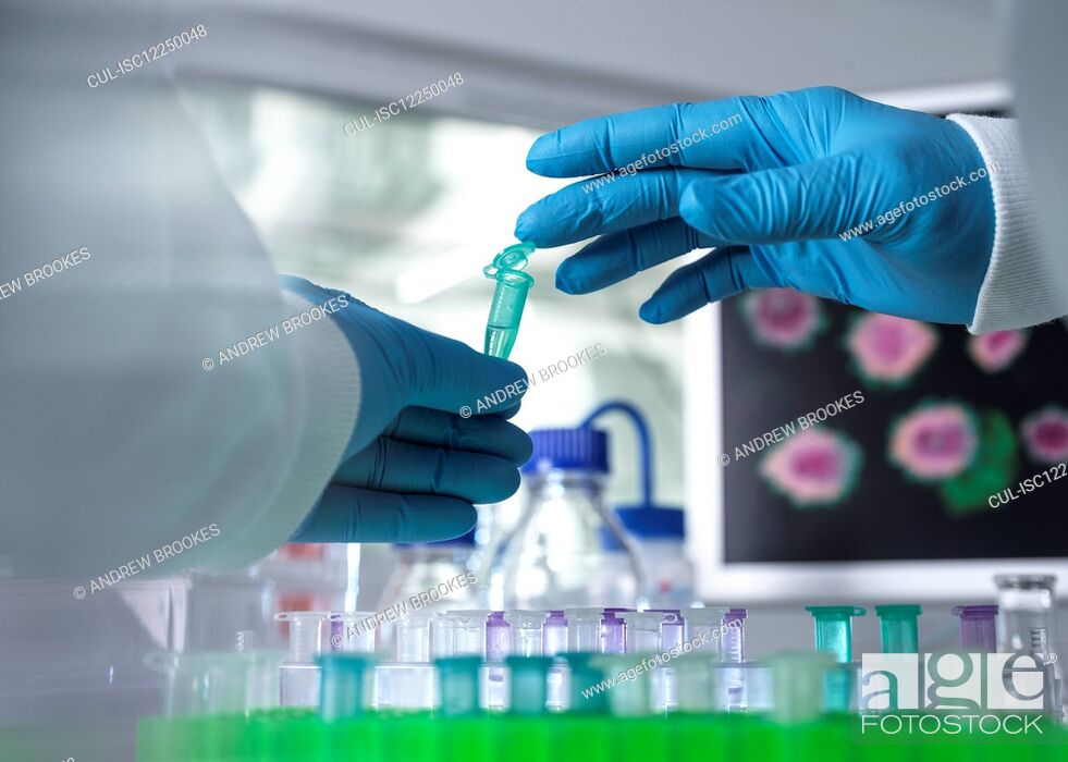 Stock Photo: Pharmaceutical Research, Scientist preparing a sample vial for analytical testing in the laboratory used in DNA, medical and pharmacology research.