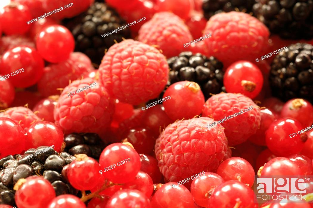 Stock Photo: detail of a group of red berries.