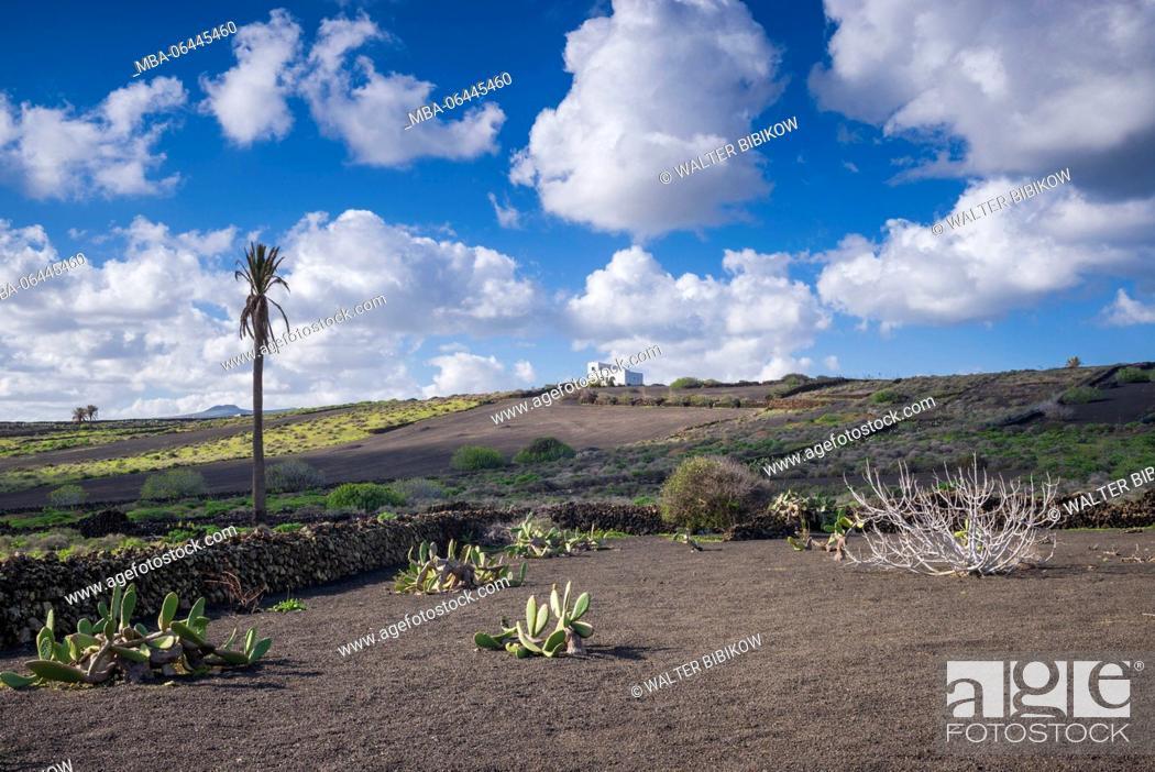 Stock Photo: Spain, Canary Islands, Lanzarote, El Capitan, north Lanzarote landscape.