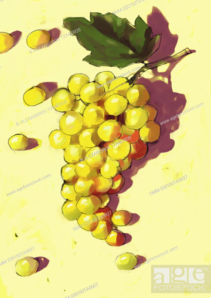 Stock Photo: A bunch of grapes.