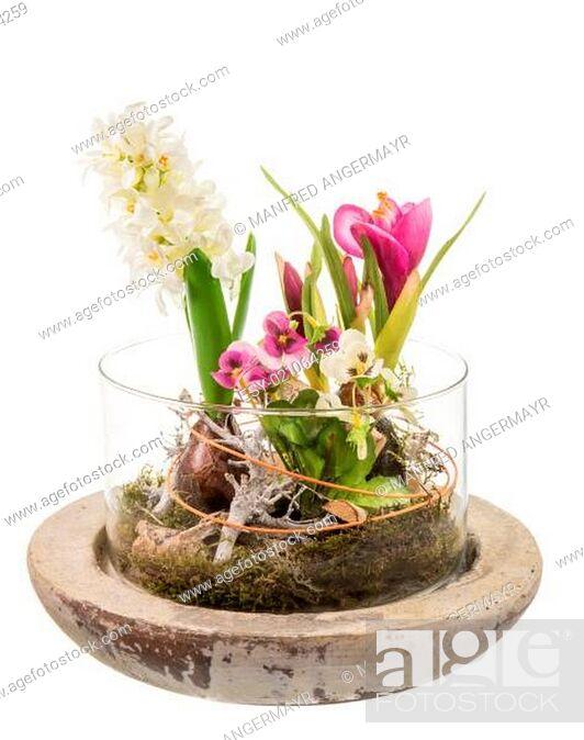 Stock Photo: Spring Deco.