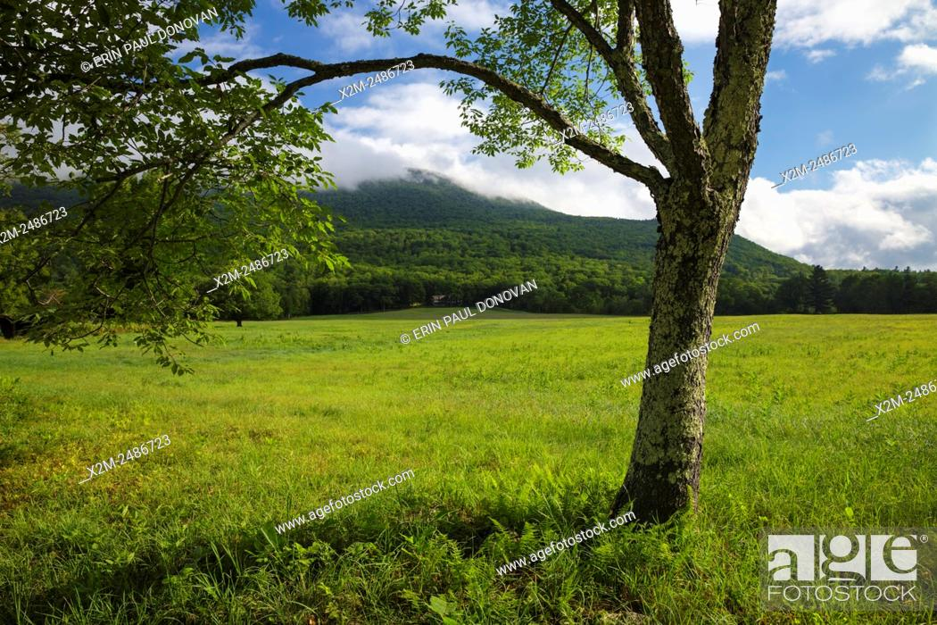 Stock Photo: Cook's Pasture along Diamond Ledge Road in Sandwich, New Hampshire during the summer months.