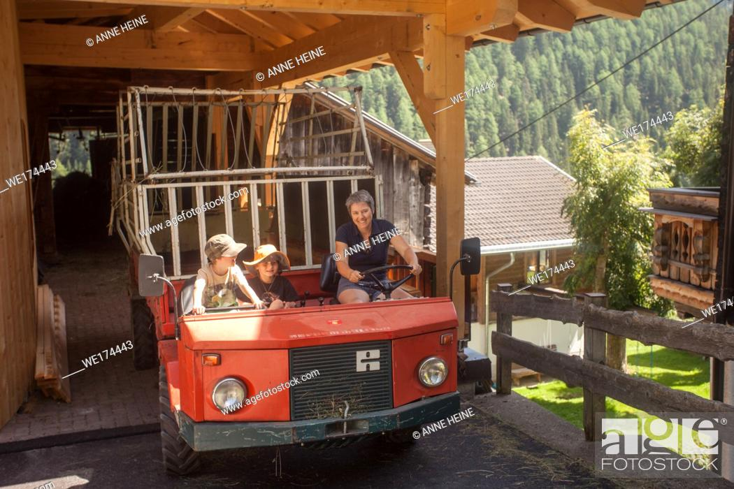 Stock Photo: Hay harvest, Haymaking on an alpine farm. This vehicle (Muli) can go steep slopes. It`s a tiny village of a handful of farms.