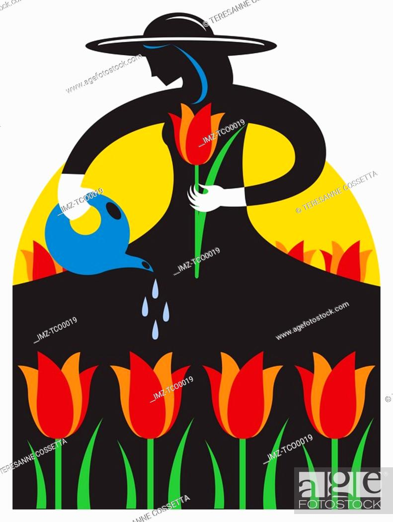 Stock Photo: A woman watering flowers at a tulip festival.