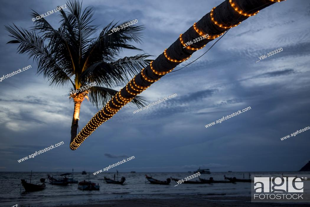 Stock Photo: Illeminated leaning coconut tree on Sairee Beach at twilight, Koh Tao, Thailand.