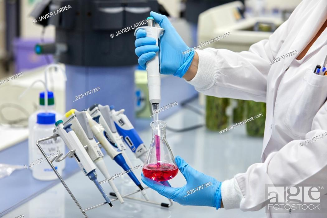 Stock Photo: Environmental laboratory, Chemical Laboratory.