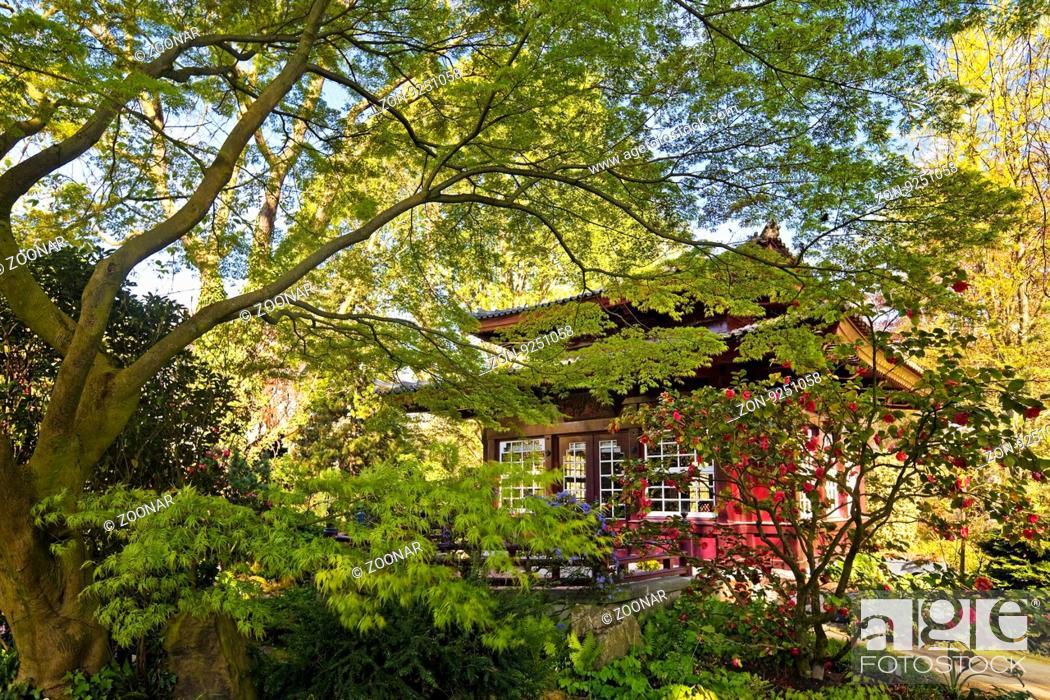 Japanischer Garten Mit Teehaus Im Fruehling Leverkusen Bergisches