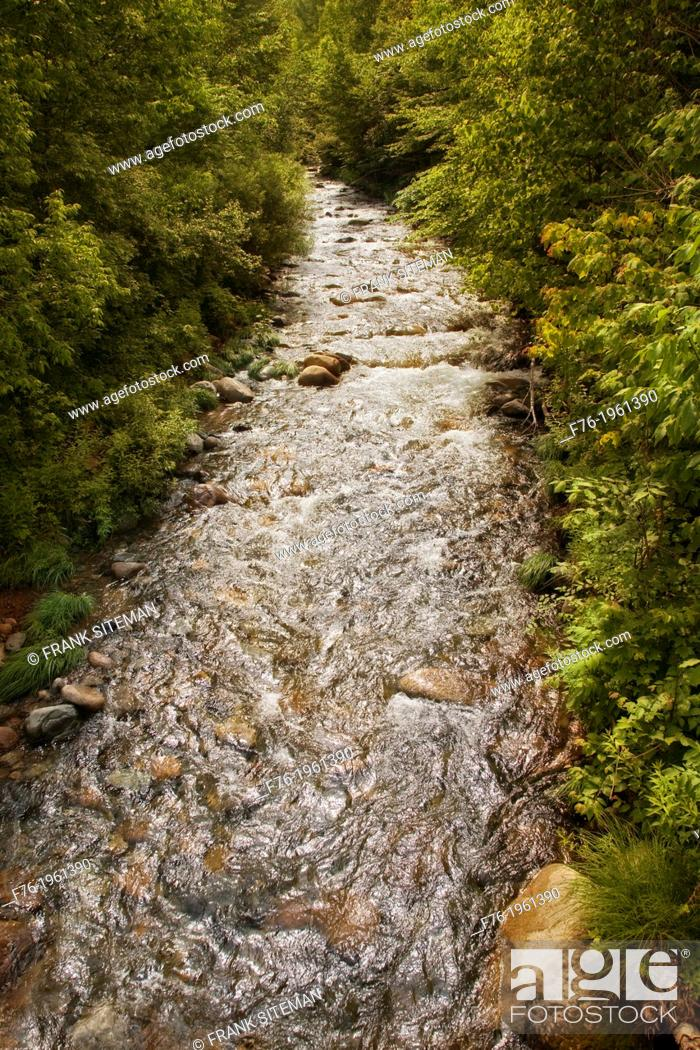 Stock Photo: Garland Brook in Norther New Hampshire's White Mountains, gushes with water after a sudden summer rainstorm.