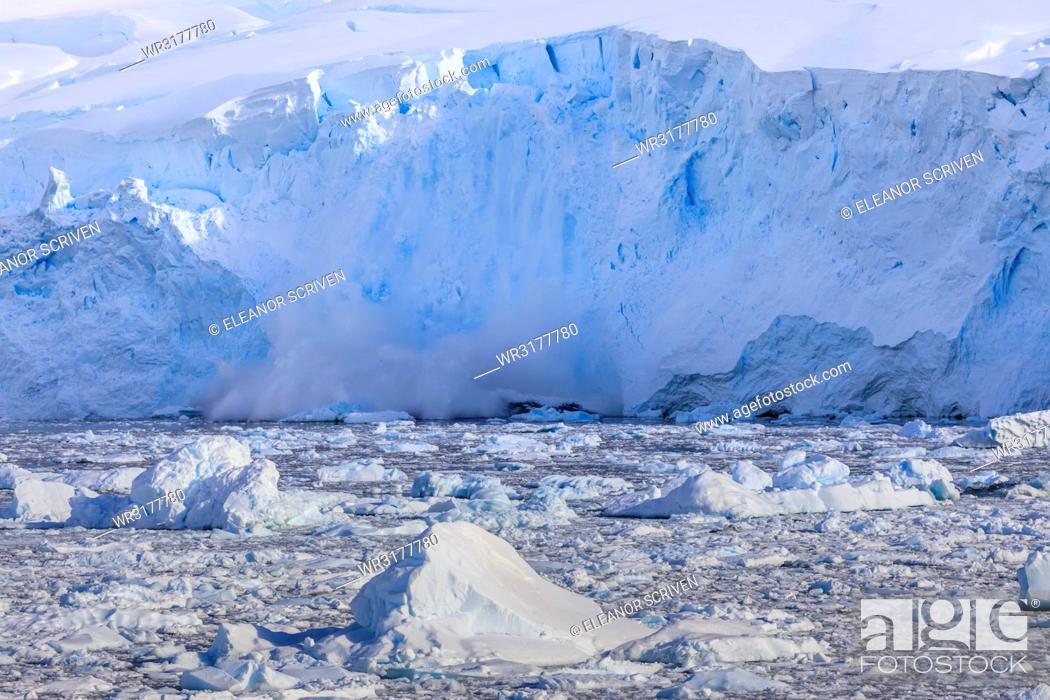Imagen: Ice avalanche, glacial calving into iceberg filled Neko Harbour, early morning sun, Graham Land, Antarctic Continent, Antarctica, Polar Regions.