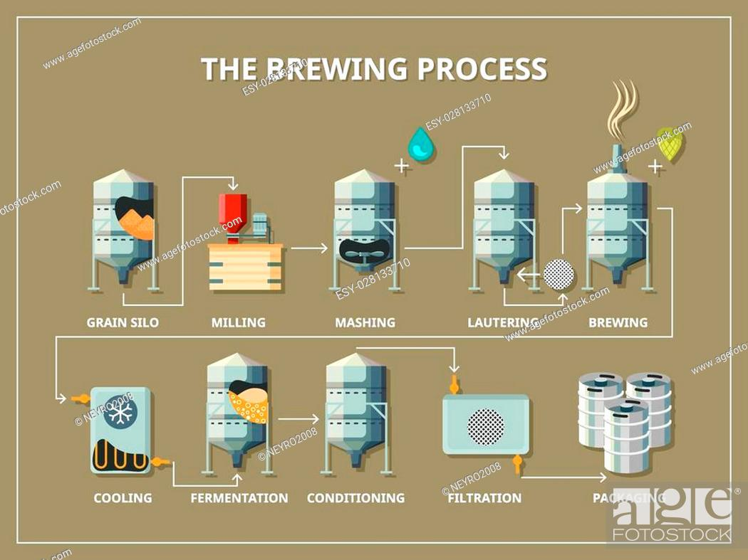 Brewery process infographic flat style  Production beer
