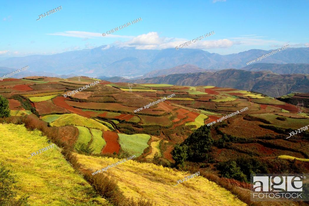 Stock Photo: Terrace cultivation, Red lands, Dongchuan District, Kunming municipality, Yunnan Province, China.