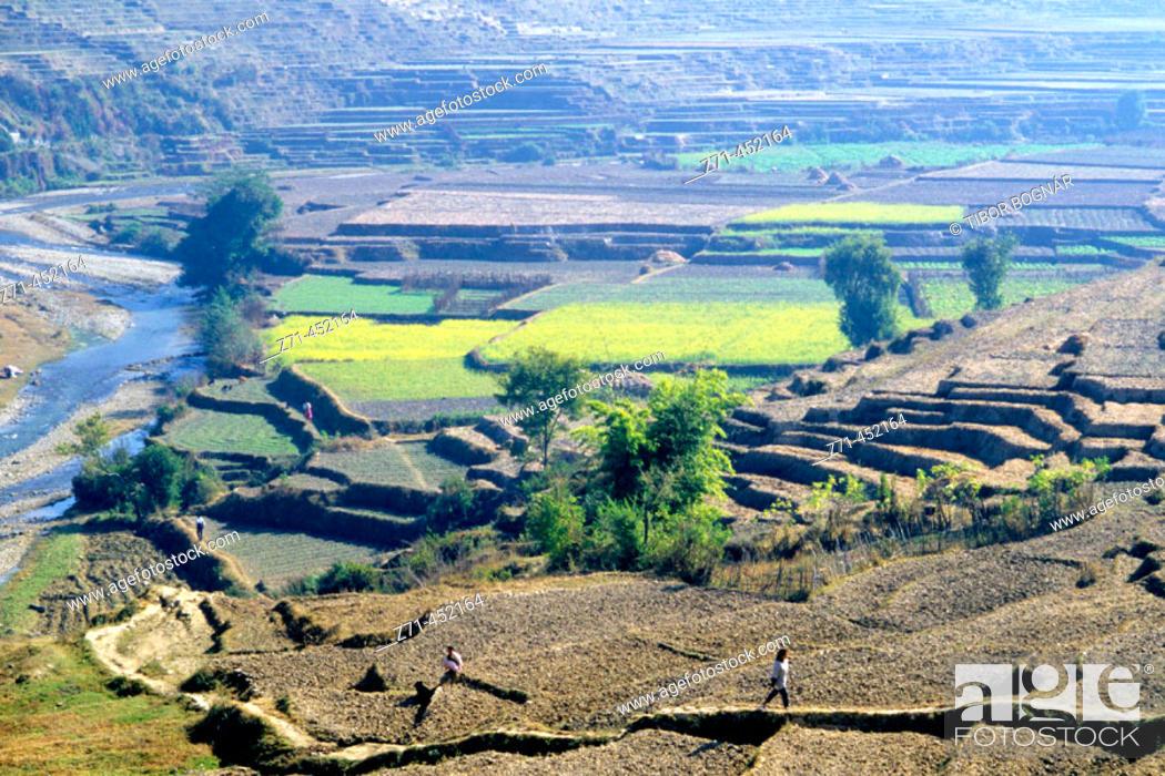 Stock Photo: Terraced fields, Kathmandu Valley. Nepal.