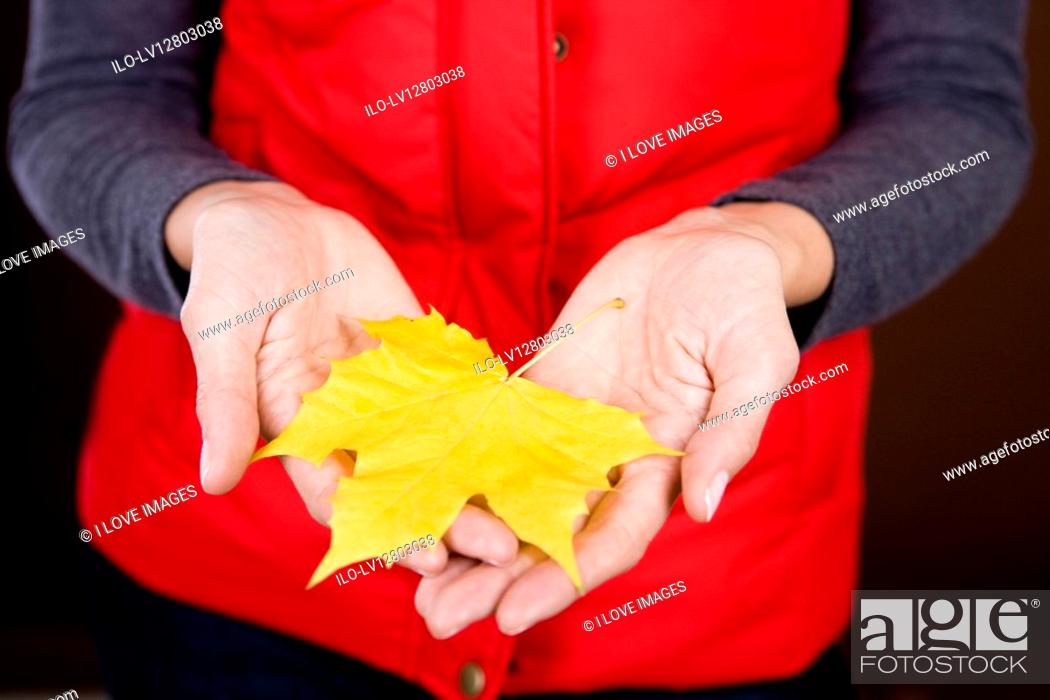 Stock Photo: A woman holding an autumn leaf.