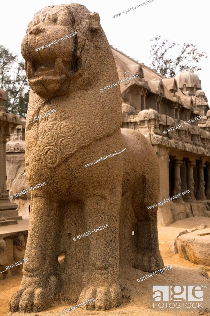 Stock Photo: Standing Lion in front of the Draupadi Ratha within the Five Rathas Panch Rathas complex at Mahabalipuram Mamallapuram, UNESCO World Heritage Site, Tamil Nadu.