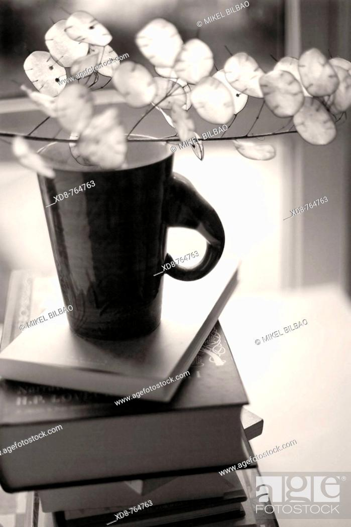 Stock Photo: books pile and a coffee cup.