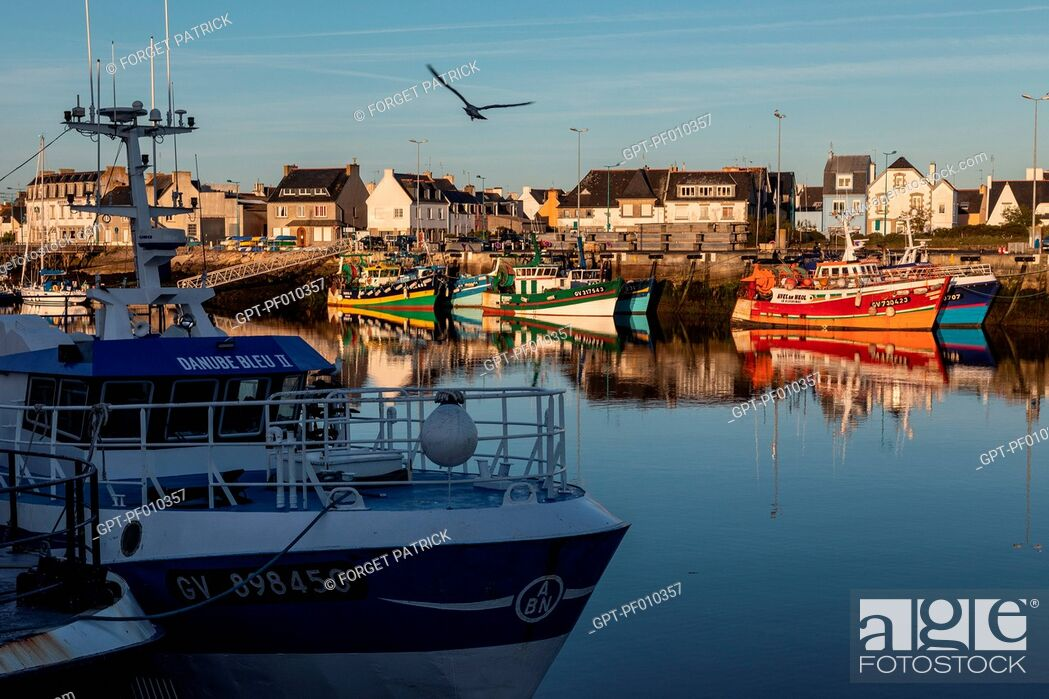 Stock Photo: FISHERMEN'S BOATS IN THE PORT, LECHIAGAT QUAY, GUILVINEC, FINISTERE, BRITTANY, FRANCE.