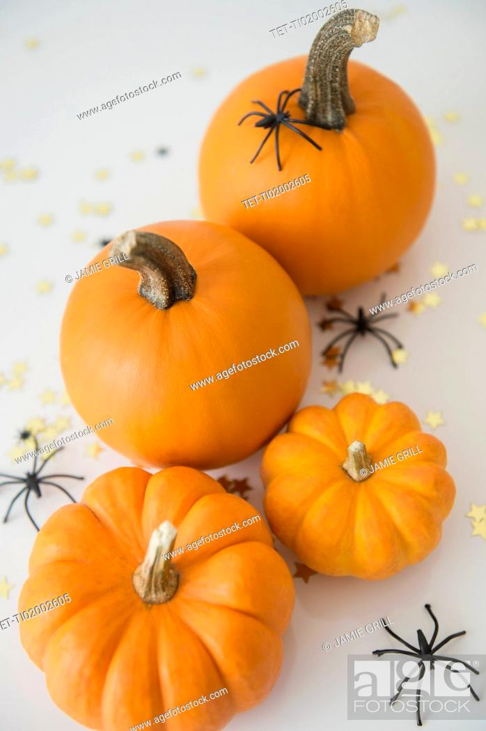 Stock Photo: Studio Shot of pumpkins with halloween decoration.