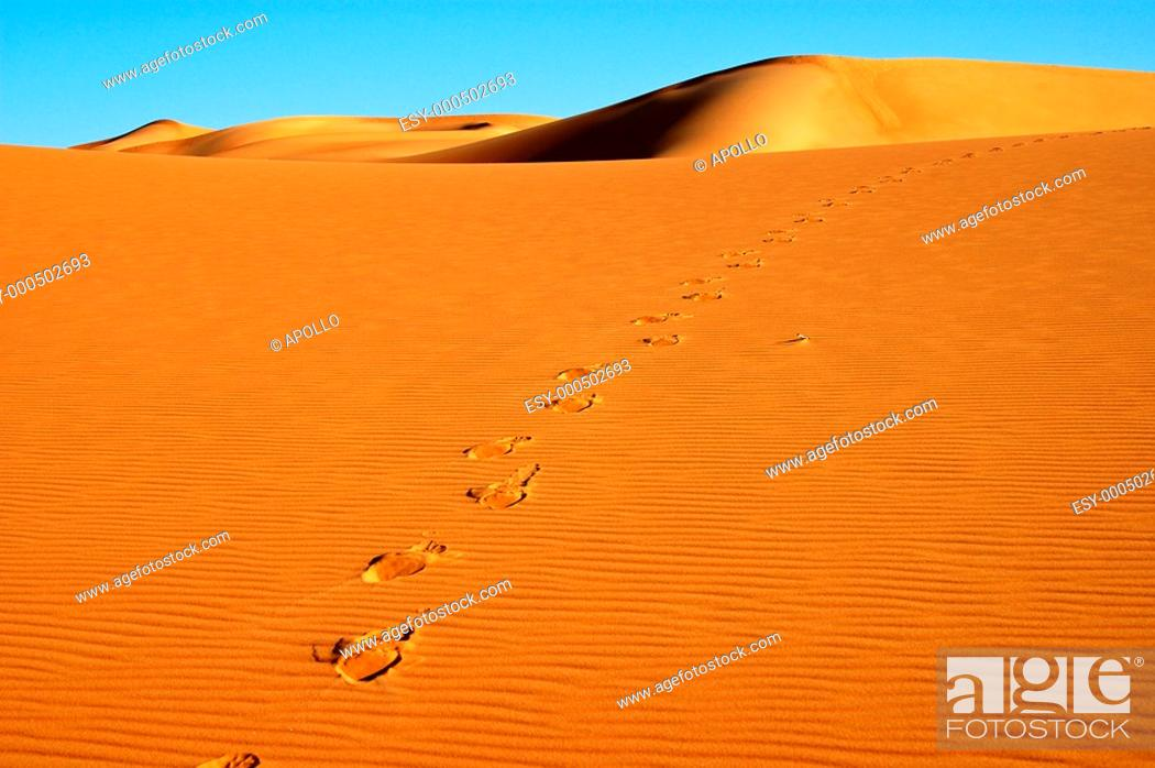 Stock Photo: Footprints on a sand dune in the Sahara desert, Africa.