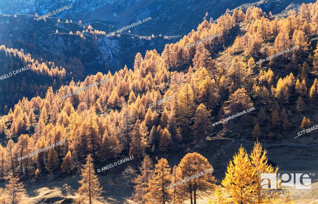 Stock Photo: Switzerland, Canton Wallis, Simplon Pass.