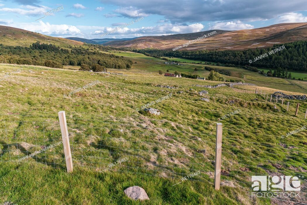 Stock Photo: Impressions from Cairngorms national park in Scotland, UK in August 2018.