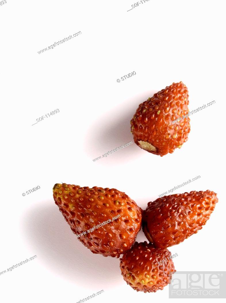 Stock Photo: Wild strawberries.