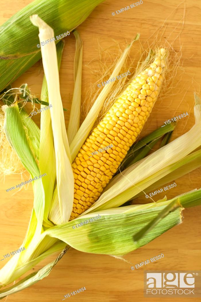 Imagen: Corn cobs. Valencia. Spain.