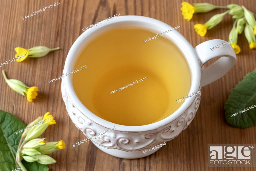 Stock Photo: A cup of herbal tea with fresh wild primula flowers.