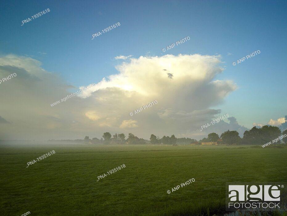 Stock Photo: Rottige Meente, Weststellingwerf, Frisia, The Netherlands, Holland, Europe.