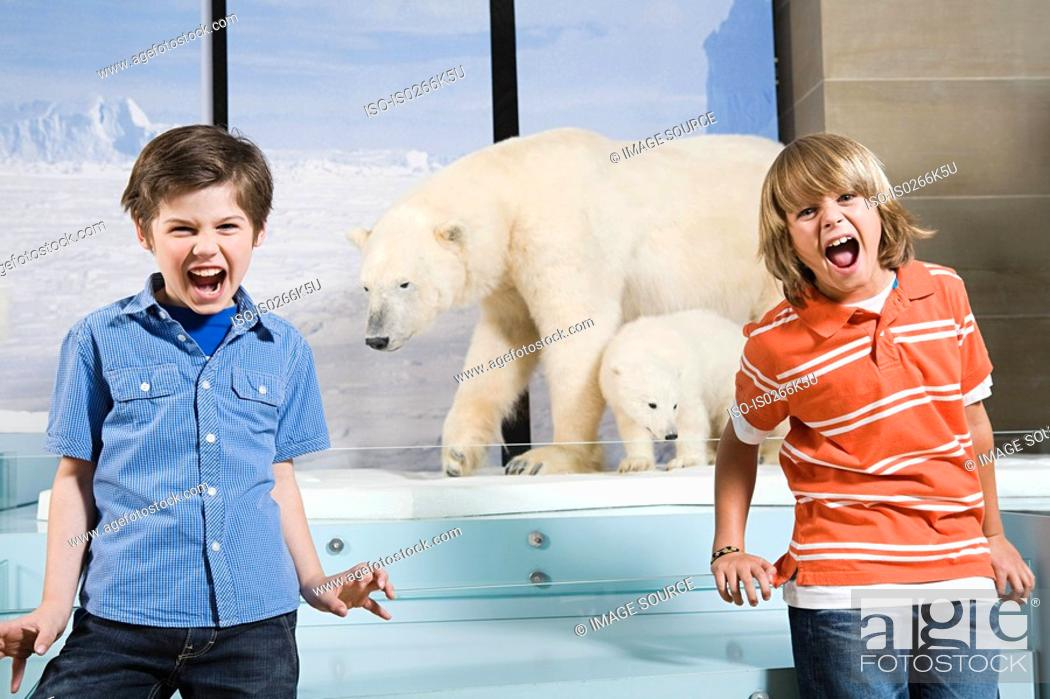 Stock Photo: Scared boys screaming at polar bears.