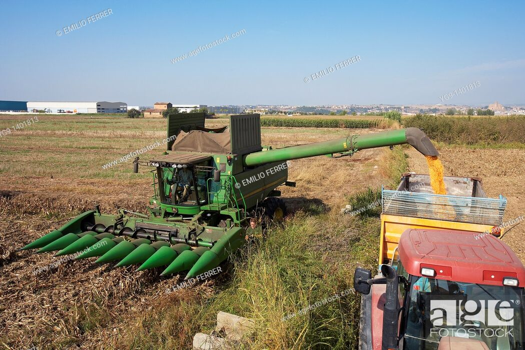 Stock Photo: Combine-harvester unloading corn into a tow.