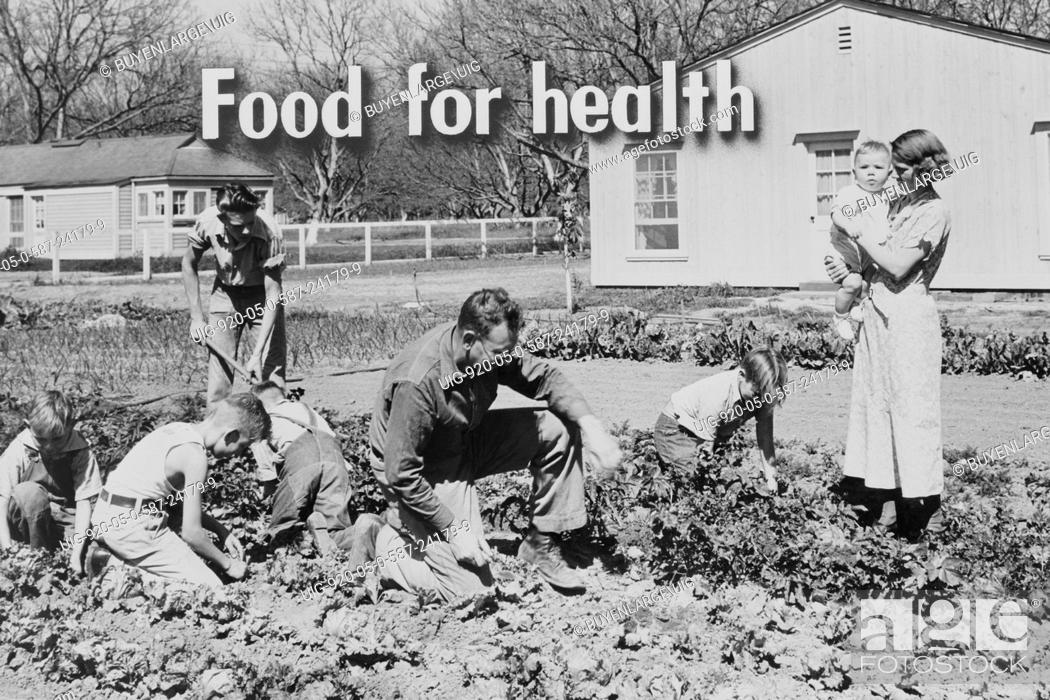 Stock Photo: Homegrown food is homegrown health. Exercise, fresh air, sunshine, as well as good things to eat, mean good health for the whole family.