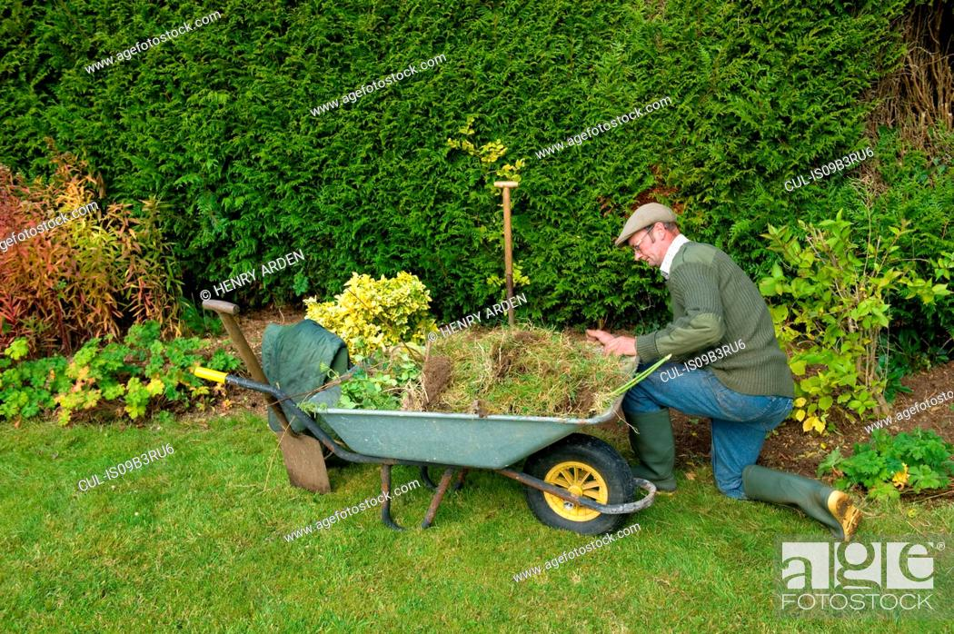 Stock Photo: Mature man kneeling by wheelbarrow gardening.
