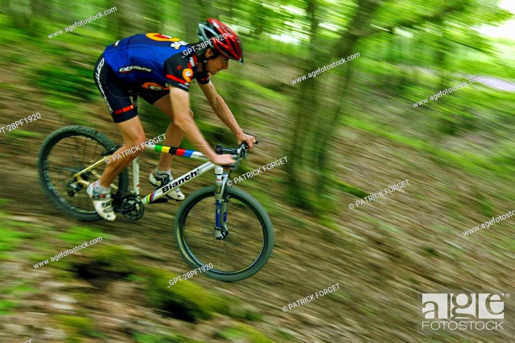 Imagen: MOUNTAIN BIKE RIDE IN THE FOREST OF THE PERCHE REGION OF NOGENT-LE-ROTROU, EURE-ET-LOIR 28, FRANCE.