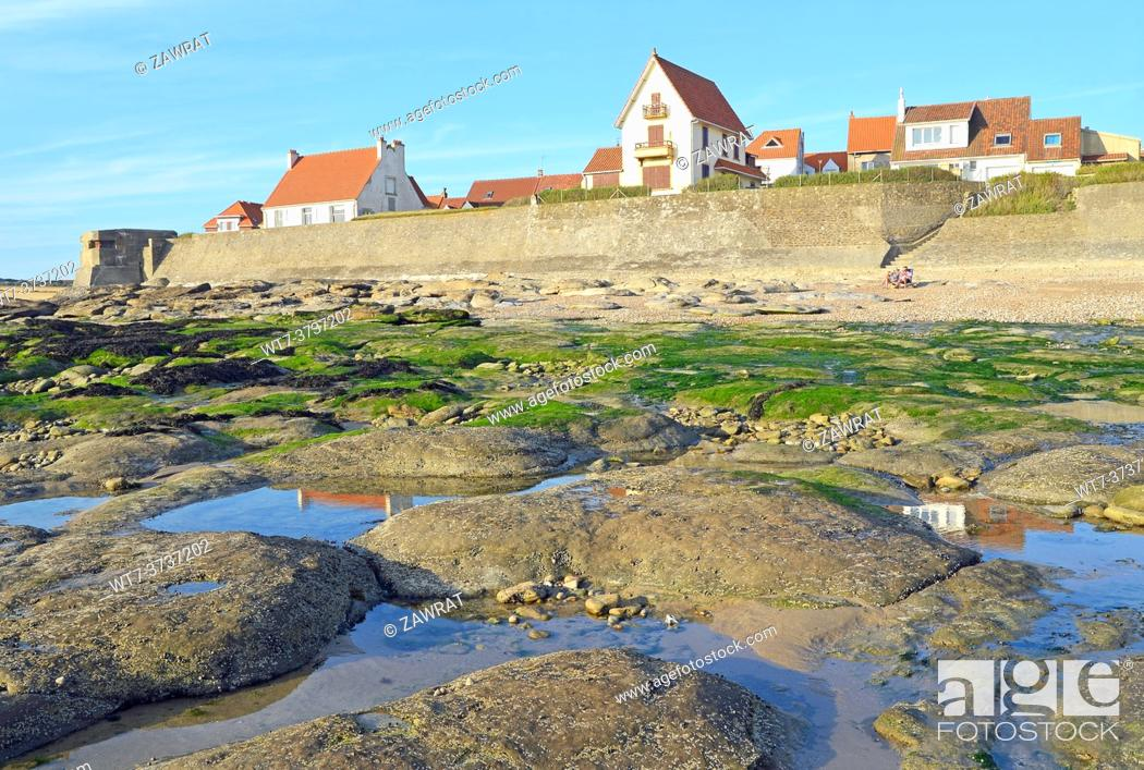Stock Photo: The shore near Audresselles.