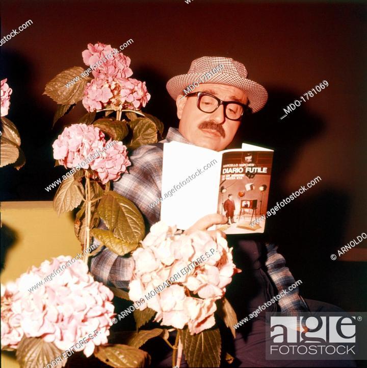 Among Pink Hydrangeas The Italian Artist Marcello Marchesi Stock